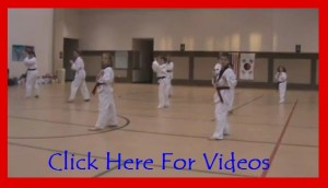 Tae Kwon Do Videos Cedar Hill Texas